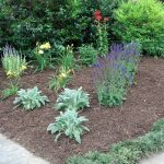 Flowers for Gardens in Burke VA